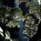 Yosemite Falls [Print #0090]