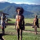 Dani tribesman, Papua New Guinea [Print #0465]